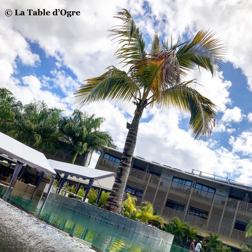 The Spoon Palmier piscine